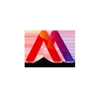 Afe-Artist-Management_logo