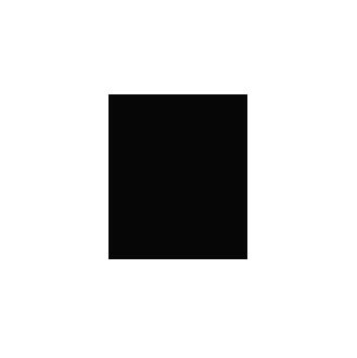 Afe-Pictures_logo