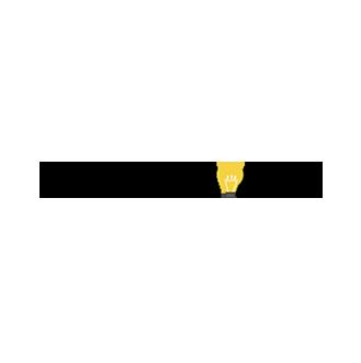Celebrithink_logo